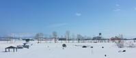 晴天風景の中にオジロワシがいる2021/03/05 - 今朝の一枚 石狩川の朝
