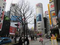 3月5日㈮の109前交差点 - でじたる渋谷NEWS