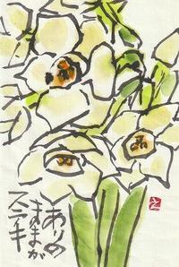 房咲き水仙 - 日々是絵手紙