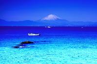 令和3年2月の富士(22)森戸海岸の富士 - 富士への散歩道 ~撮影記~