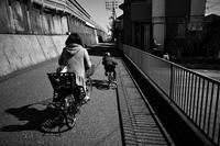 散歩ですれ違う。20210307 - Yoshi-A の写真の楽しみ