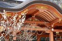 「長岡天満宮再訪」 - ほぼ京都人の密やかな眺め Excite Blog版