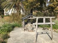 南伊豆@内緒にしておきたいお気に入りの海景色 - 小粋な道草ブログ