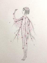 しだれ桜。。。 - umi no oto ♪