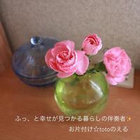 お片付けサポート - お片付け☆totoのえる  - 茨城・つくば 整理収納アドバイザー