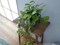 わが家にアンティークの花台がやってきました - シンプルで心地いい暮らし