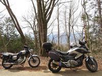 バイクでオオマシコ詣 - 元 子連れバーダーの日々