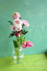 PINK FLOWERSももいろづくし 後半 - Impression Days