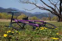 cycling - D-JOURNAL