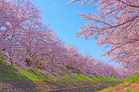 4月5月開催出展者募集中 - 駅マエクラフト 奈良ノ空カラ