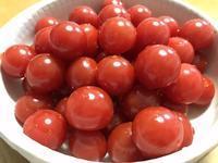 ミニトマト - 手のじ行くバイ