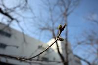 本日の書道 - 鎌倉のデイサービス「やと」のブログ
