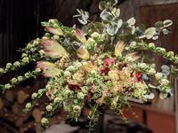 Flower Arrangements - クリエイティブライフ