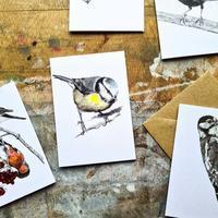 ブルーティットたち、ガーデンバードの巣作りがはじまる! - ブルーベルの森-ブログ-英国のハンドメイド陶器と雑貨の通販