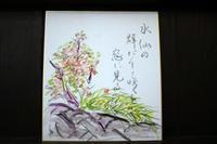 俳句~ 春を詠む ~ - 鎌倉のデイサービス「やと」のブログ
