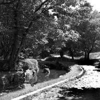 7年前の恵庭ふるさと公園 - 照片画廊