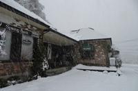 大雪が降り積もりました!!@Mt.乗鞍スノーリゾート。 - 乗鞍高原カフェ&バー スプリングバンクの日記②