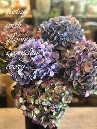 アンティーク紫陽花 -  Flower and cafe 花空間 ivory (アイボリー)
