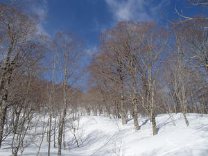 2021/3/7 焼石岳(冬期中沼コース) -