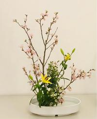 いけばなで心の開放 - 自然を見つめて自分と向き合う心の花