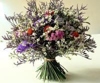 スターチスの花束 - La Pousse(ラプス) フローラルのときどき