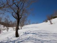 長い林道歩いてサプライズ!白尾山 - 山にでかける日