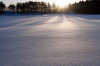 極寒雪中散歩Vol.2 - Tom's starry sky & landscape