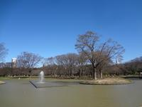 代々木公園朝散歩とムーのクロックマダム - ひなたぼっこ