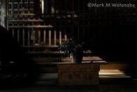 光と影 - Mark.M.Watanabeの熊本撮影紀行