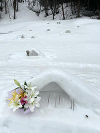 雪の上のお参り - ユリ 百合 ゆり 魚沼農場の日々