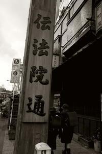 Tokyo Snap 77浅草伝法院通り - 花は桜木、