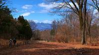 森の冬景色とマンサクと・・・赤城自然園(3月14日) - 『私のデジタル写真眼』