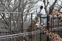 栄養補給その2 - 動物園でお散歩