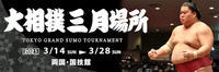 【大相撲春場所】横綱白鵬、鶴竜は引退を - 東金、折々の風景