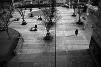 俯瞰する20210312 - Yoshi-A の写真の楽しみ