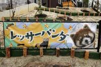 名古屋市東山動植物園の旅行記を姉妹ブログ「レッサーパンダ紀行」にアップしました - (続)レッサーパンダ紀行