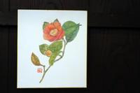 色鉛筆画~ 椿 ~ - 鎌倉のデイサービス「やと」のブログ