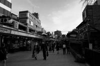 Tokyo Snap 78浅草仲見世通り - 花は桜木、