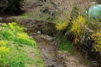 桜井市箸中纒向川 - ぶらり記録 2:奈良・大阪・・・