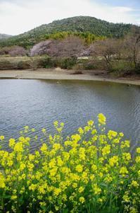 桜井市三輪 - ぶらり記録 2:奈良・大阪・・・