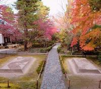 秋の京都一人旅・法然寺 - 月の旅人~美月ココの徒然日記~