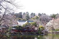 井の頭公園にて☆続き - さんじゃらっと☆blog2