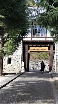 藤田八束の素敵な春を訪ねる旅、四国愛媛県松山にやって参りました。可愛いメジロと河津桜の美しさに癒されます - 藤田八束の日記