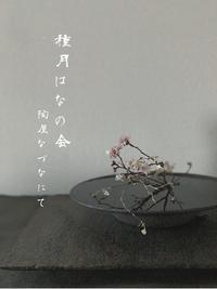 種月はなの会ー桜ー@陶屋なづな - tukikusa note