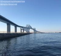快晴の東京湾 - surftrippper サーフィンという名の旅