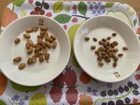乾燥納豆食べ比べ - 日々の雑記ノオト