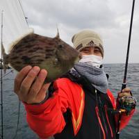 【大鱗】カワハギ&ジギング! - まんぼう&大鱗 釣果ブログ 第2弾!