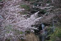 明日香村稲渕 - ぶらり記録 2:奈良・大阪・・・