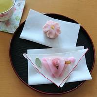 桜を感じながら春の和菓子2種・扇屋@本郷三丁目 - カステラさん