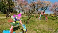 梅の花見 - ふうりゅう日記